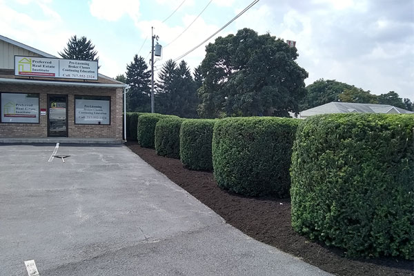 Commercial Mulching & Pruning - Landscaping Services in Chambersburg & Shippensburg, PA