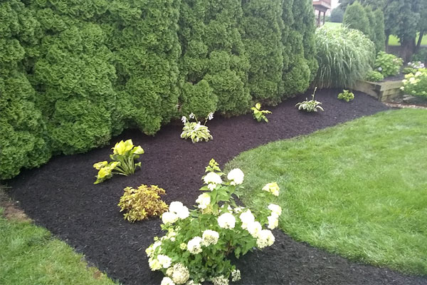 Landscape Design, Pruning & Planting - Landscaping Services in Chambersburg & Shippensburg, PA