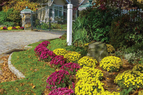 Autumn Is a Prime Time to Tend Lawns and Gardens