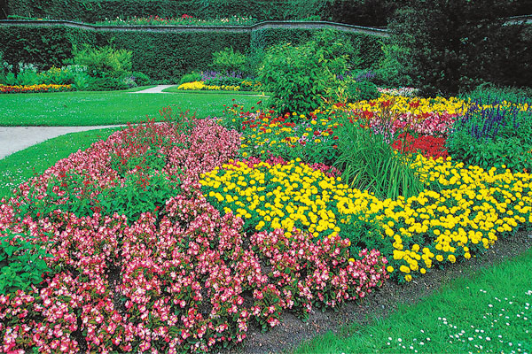 How Color Can Affect Your Garden - Landscaping & Gardening Services